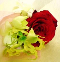 Saigon_flower