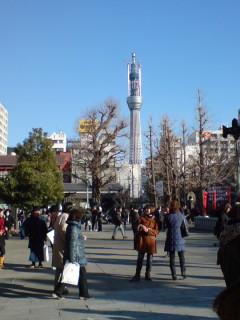 浅草寺境内からスカイツリー。