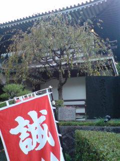 龍馬in京都史跡巡り(東山編)