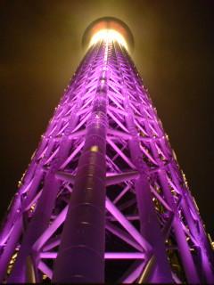 (今頃)東京スカイツリーに上る(しかも雨)