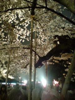 「奉納靖国神社夜桜能(第1夜)」を観る(途中まで)