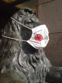 Lion_20200814092101